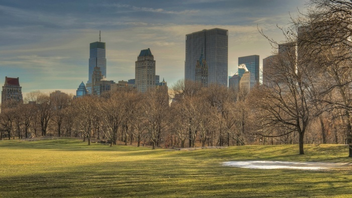 Central Park Sheep Meadow NYC